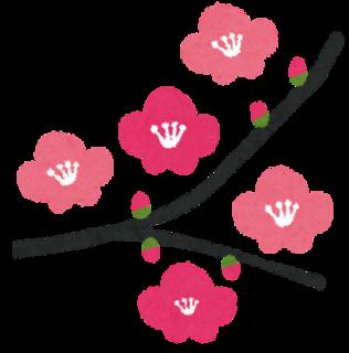 flower_ume.png